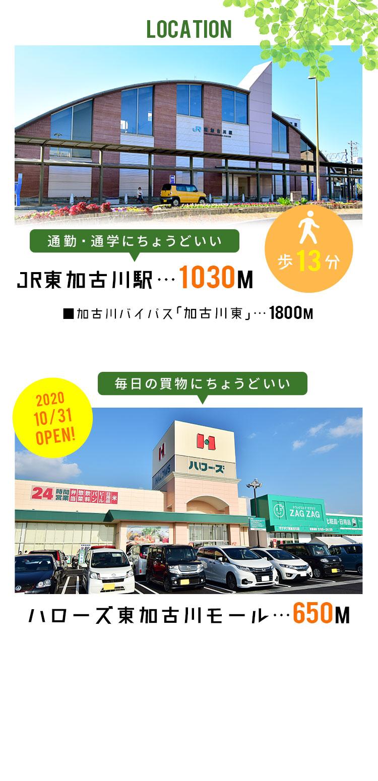 店 加古川 ハローズ 東